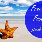 spiaggia e mare con stella marina-freelance e facebook
