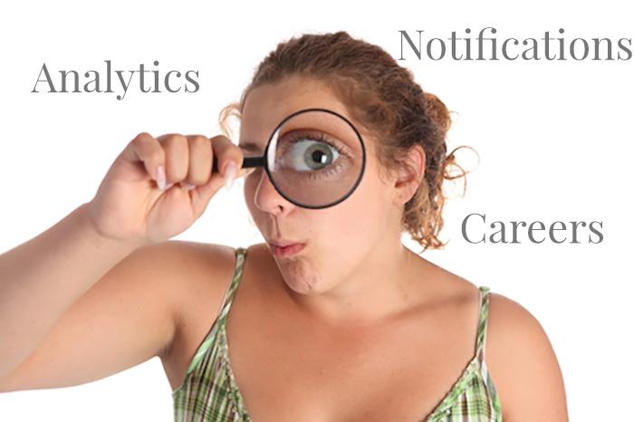Pagine Aziendali: analytics e careers