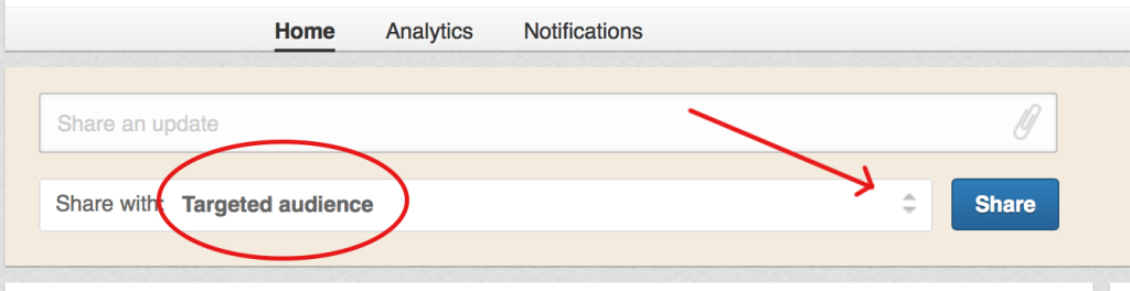 Pagine Linkedin: targeted audience