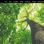 woodlab copertina