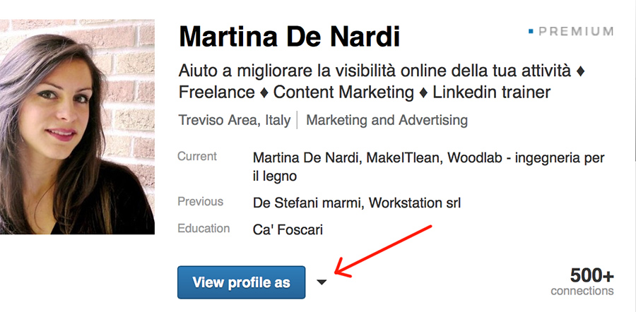 Profilo Linkedin martina de nardi