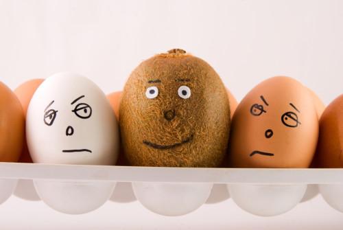 Un kiwi in mezzo a uova: essere unico