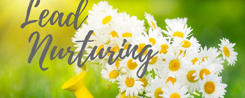 come fare lead nurturing
